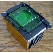 Радиатор HP p/n 279680-001 (socket 603/604) - Элиста