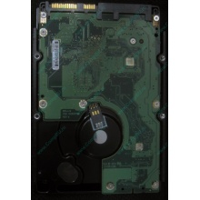 HP 454228-001 146Gb 15k SAS HDD (Элиста)