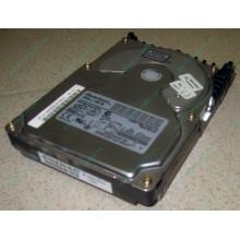 Жесткий диск 18.4Gb Quantum Atlas 10K III U160 SCSI (Элиста)