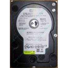 Б/У жёсткий диск 400Gb WD WD4000YR Caviar RE2 7200 rpm SATA  (Элиста)