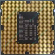 Процессор Intel Celeron G540 (2x2.5GHz /L3 2048kb) SR05J s.1155 (Элиста)