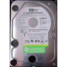Б/У жёсткий диск 500Gb Western Digital WD5000AVVS (WD AV-GP 500 GB) 5400 rpm SATA (Элиста)